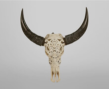 Buffalo Bone Skull H70 | Decord.gr