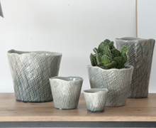 Tangle Orchipots Light Grey | Decord.gr